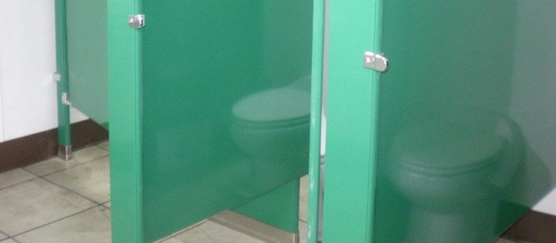 Why Women Strongly Prefer Flush Restrooms