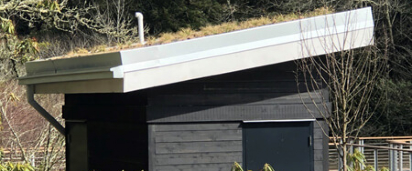 A Green Roof is a Cool Way to Make Your Building Eco-friendly